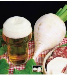 More about Ředkev polodlouhá bílá k pivu - prodej semene ředkve - 60 ks