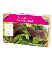 Pěstební sada na saláty s dřevěným květináčem – 1 ks