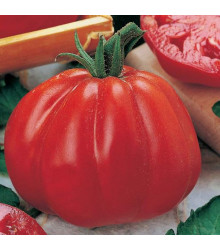 Rajče Coure di Bue - Lycopersicon lycopersicum - osivo rajčat - 10 ks