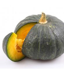 BIO dýně Zelené Hokkaido - Cucurbita maxima - bio semena dýně - 7 ks