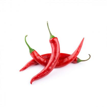 Chilli - pálivé papriky